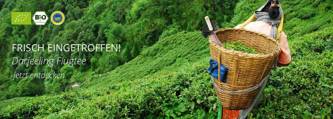 Darjeeling Flugtee